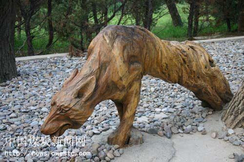 贾会敏:西安秦岭野生动物园根雕欣赏6幅